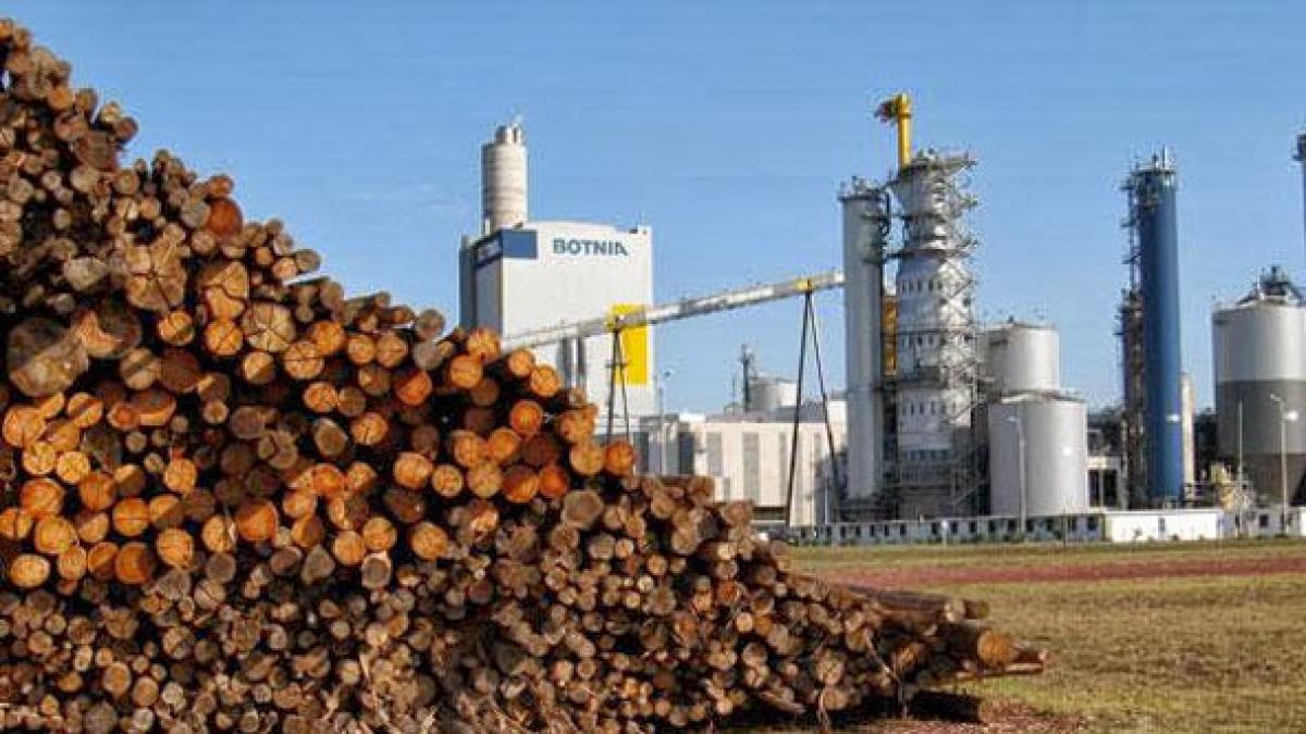 """Ley de la Madera: """"Schepens nos reconoció que la AFOA pidió directamente al Gobernador la derogación de la ley de la madera"""""""